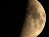 Mond9982pp