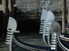 Rudern-Venedig-004
