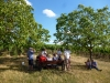 12 Ein schattiges Plätzchen im Weinberg