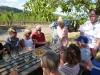 13 Weinprobe im Weinberg