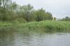 peene-2012-18